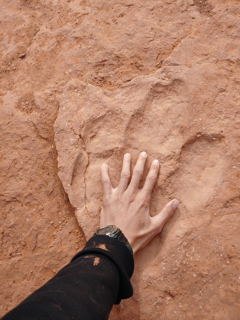 see dinosaur tracks on our better than Zion jeep tours, Lexus off-roading adventures